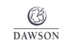 Dawson Technical Llc on pacific business news hawaii